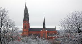 Hemstädning Uppsala