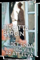 Birgitta Bergins senaste roman